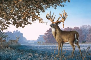 Zach Wild's later work introduced a new layer of subtext, with the larger deer indicating an object in the foreground and thus closer to the eye.