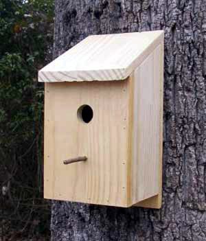 bird house plans uk