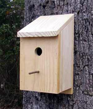 Bird House Plans Uk Workable26uvo